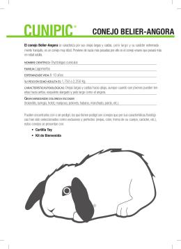 Fichas tecnica conejo belier