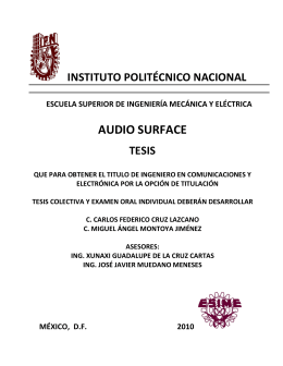 AUDIO SURFACE - Instituto Politécnico Nacional