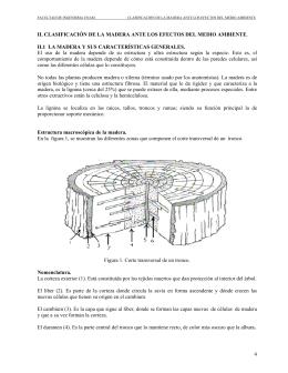 4 II. CLASIFICACIÓN DE LA MADERA ANTE LOS