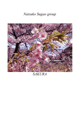 Natsuko Sugao group SAKURA