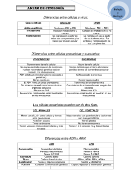ANEXO DE CITOLOGÍA Diferencias entre células y virus
