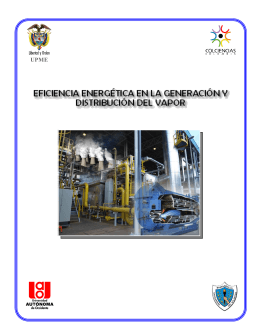 Eficiencia Energética en Generación y Distribución de Vapor