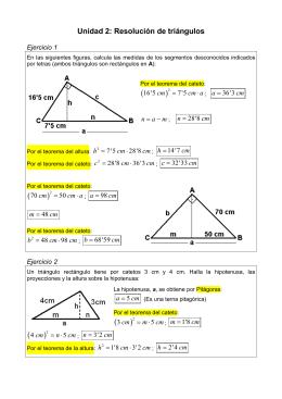 Solucionario ejercicios de Resolución de Triángulos