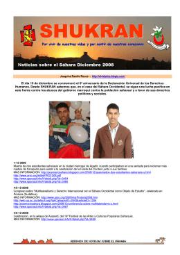 Noticias Sáhara Diciembre 2008