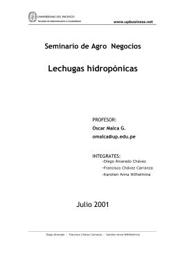 Producción de Lechugas Hidropónicas