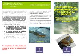 TRIPTICO SILURO-WEB - Gobierno de Castilla