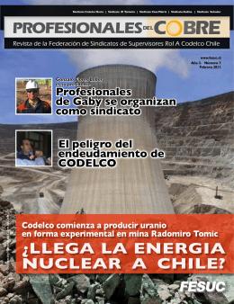 El peligro del endeudamiento de CODELCO Profesionales de Gaby