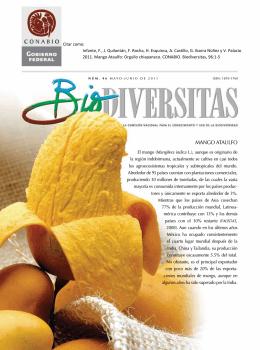 mango ataulfo - Biodiversidad Mexicana