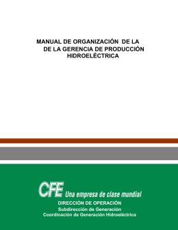 MANUAL DE ORGANIZACIÓN GPH