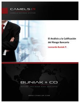 El Análisis y la Calificación del riesgo bancario