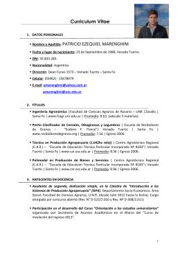 C.V. ACADÉMICO - Patricio E. Marenghini 24-07-13
