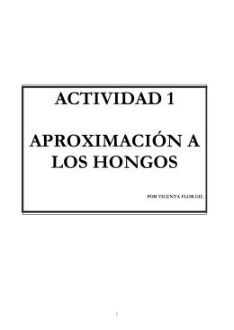 actividad hongos