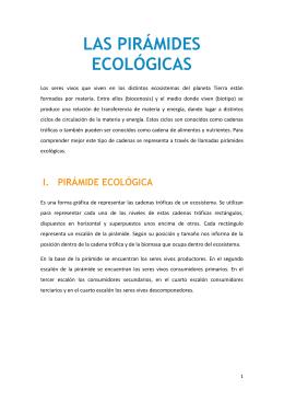 LAS PIRÁMIDES ECOLÓGICAS