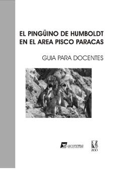 Pingüino de Humboldt - Guía para docentes