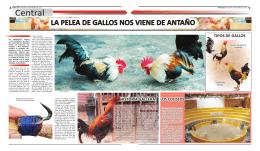 Informe Especial - Diario Hora Cero