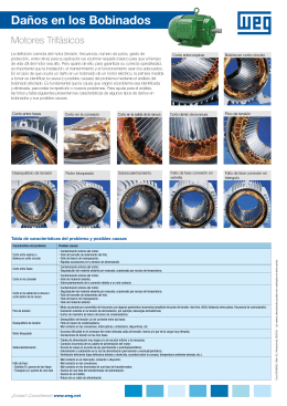 Daños en los bobinados - Motores trifásicos