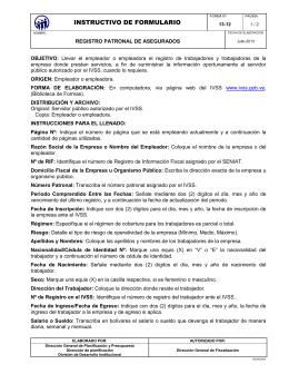 INSTRUCTIVO DE FORMULARIO
