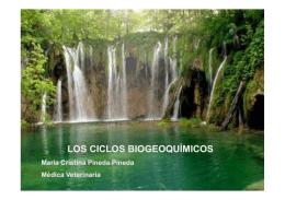 ciclos biogeoquímicos feb 19.10 [Modo de compatibilidad]