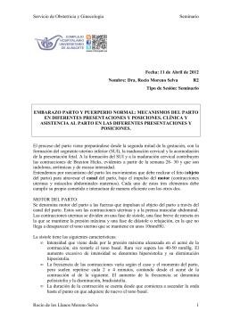 Servicio de Obstetricia y Ginecología Seminario Rocío de los Llanos