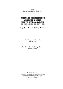 PDF (Tesis) - Repositorio Digital Institucional del Centro Atómico