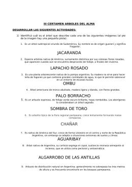 Camila Aguerri Lanz - Escuela n°6 José de San Martín