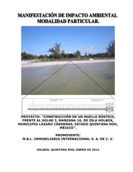 """proyecto: """"construcción de un muelle rústico, frente al solar 2"""