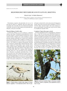 registros documentados de aves en santa fe, argentina