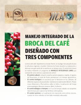 BROCA DEL CAFÉ - promecafe.org