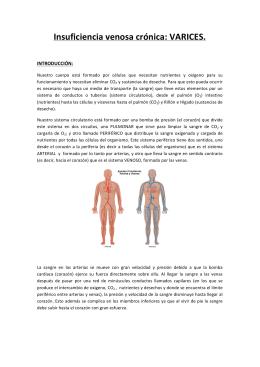 Insuficiencia venosa crónica: VARICES. - Página principal