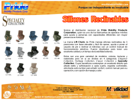 Ficha general SILLONES RECLINABLES003