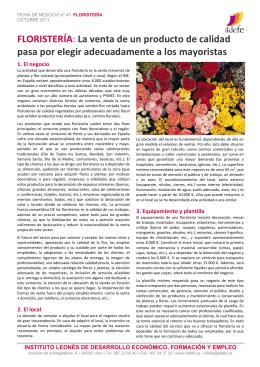 Ficha de Negocio ILDEFE 41 _Floristería