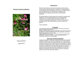 Plantas Curativas final Sept 2013