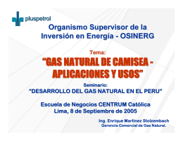 """GAS NATURAL DE CAMISEA"