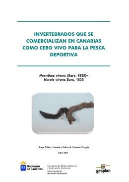 invertebrados que se comercializan en canarias como cebo vivo