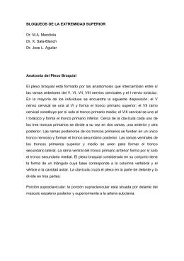 BLOQUEOS DE LA EXTREMIDAD SUPERIOR Dr. M.A. Mendiola Dr