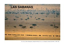 LAS SABANAS - Facultad de Humanidades-UNNE