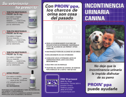 incontinencia urinaria canina incontinencia urinaria canina