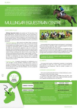 mullingar equestrian centre