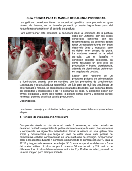GUÍA TÉCNICA PARA EL MANEJO DE GALLINAS PONEDORAS