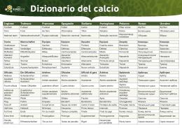 Dizionario del calcio