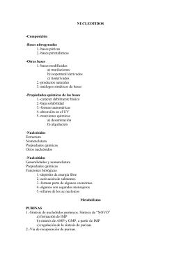 NUCLEOTIDOS -Composición -Bases nitrogenadas 1.