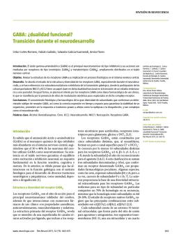 GABA: ¿dualidad funcional? Transición durante el neurodesarrollo