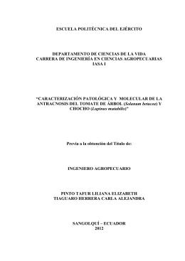 TESIS EN PDF - Repositorio Digital ESPE