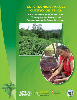 Guia técnica para el cultivo de frijol