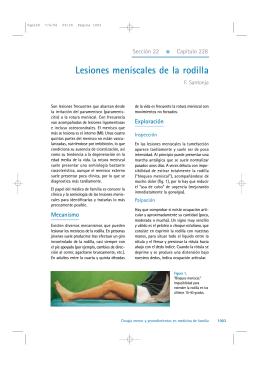 Lesiones meniscales de la rodilla