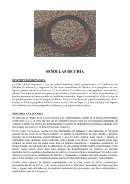 SEMILLAS DE CHÍA - Instituto de Nutrición Celular Activa