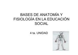 bases de anatomía y fisiología en la educación social