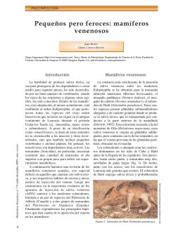 Pequeños pero feroces: mamíferos venenosos