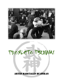 PROYECTO TSUNAMI - Bujinkan Segovia