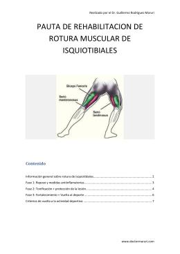 pauta de rehabilitacion de rotura muscular de isquiotibiales